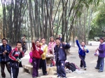 Bambuspark in China